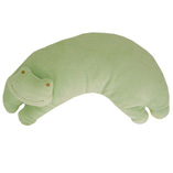 Green Frog Pillow